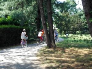 IppoCampus bici